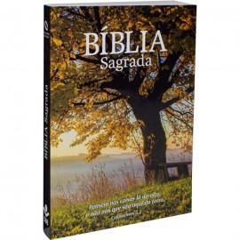 Biblia Nova Almeida Atualizada Brochura