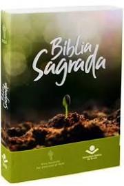 Biblia Missionaria  Brochura  Semente  Ntlh
