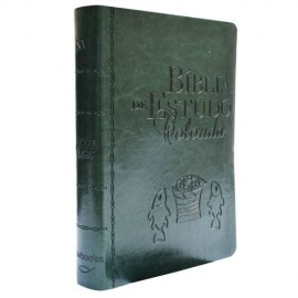 Biblia De Estudo Colorida Verde
