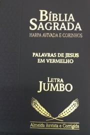 Biblia letra jumbo ziper com harpa RC cpp