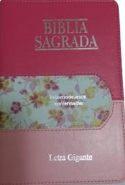 BIBLIA LETRA GIGANTE PJV TRICOLOR LUXO SBB